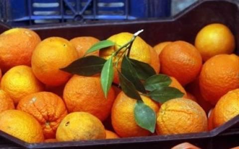 Πάτρα: Έντεκα κιλά ηρωίνης ανάμεσα στα πορτοκάλια