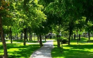 Οργανώνεται το Δίκτυο Πράσινων Πόλεων