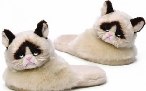 Grumpy Cat και σε παντόφλα