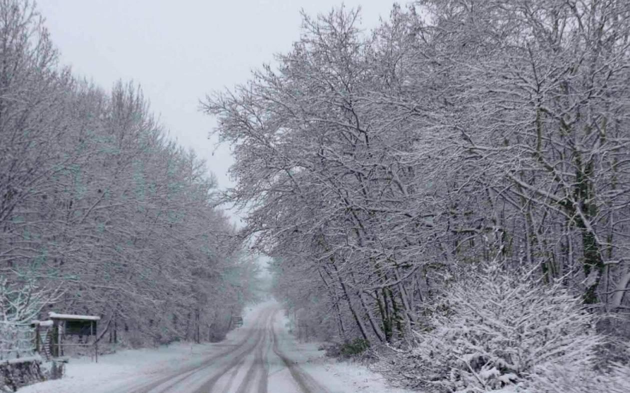 Κακοκαιρία: Ποια χιονοδρομικά κέντρα λειτουργούν