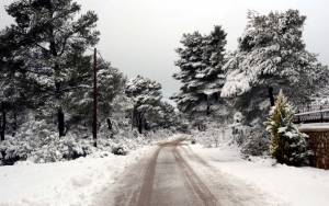 Κακοκαιρία: Οκτώ χωριά αποκλεισμένα στην Εύβοια