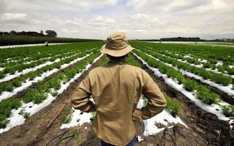 Καταβλήθηκε η πρώτη δόση της αποζημίωσης σε αγρότες και κτηνοτρόφους