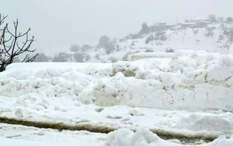 Πελοπόννησος: Καταστροφές σε καλλιέργειες λόγω του παγετού