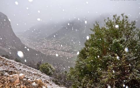 Καιρός: Σφοδρή χιονόπτωση στη νότια Κυνουρία