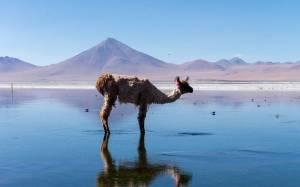 Η Βολιβία των αντιθέσεων (pics)