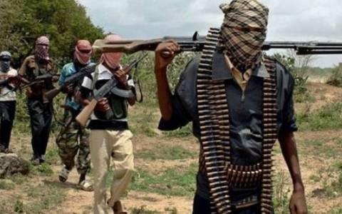 Καμερούν: Ενίσχυση από το Τσαντ στη μάχη εναντίον της Μπόκο Χαράμ