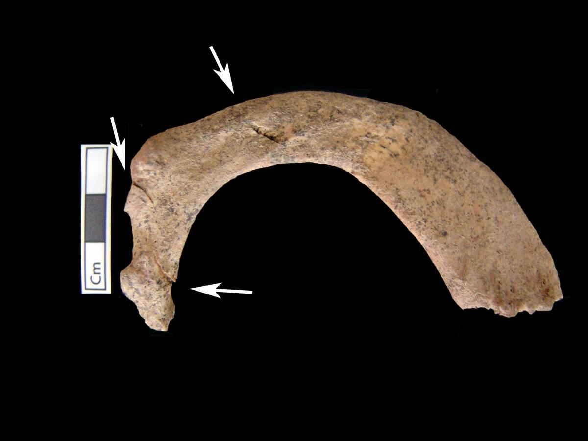 amphipoli-osto-evrimata