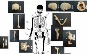 Αμφίπολη – Παλαγγιά: Στον τάφο δεν βρίσκεται η οικογένεια του Μεγάλου Αλεξάνδρου
