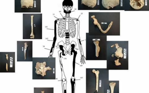 Αμφίπολη-Παλαγγιά: «Υπάρχουν άλλοι 10 σκελετοί!»