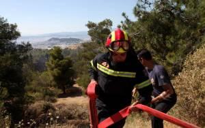 Φωτιά στη Φθιώτιδα έκαψε 15 στρέμματα δάσους
