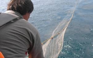 Καθορίστηκαν οι προϋποθέσεις για τον αλιευτικό τουρισμό