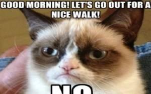 ΞΕΚΑΡΔΙΣΤΙΚΟ: Γάτα κάνει την ψόφια για να μην πάει βόλτα!