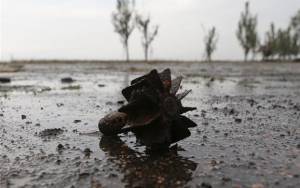 Ουκρανία: 16 άμαχοι νεκροί σε συγκρούσεις το τελευταίο 24ωρο