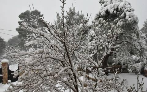 Έρχεται νέο κύμα κακοκαιρίας – Τσουχτερό κρύο και χιόνια και στην Αττική