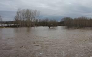 Έβρος: Εκκενώνεται το χωριό Λαγυνά
