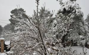 Καιρός: Στην κατάψυξη η χώρα – Χιόνια στην Αττική