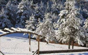 Κακοκαιρία: Στα λευκά ντύθηκαν τα ορεινά της Ξάνθης (photos)