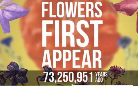 570 εκατομμύρια χρόνια εξέλιξης σε ένα λεπτό! (video)