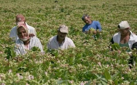 Οι αγρότες την Τετάρτη συζητούν στο υπ. Αγροτικής Ανάπτυξης