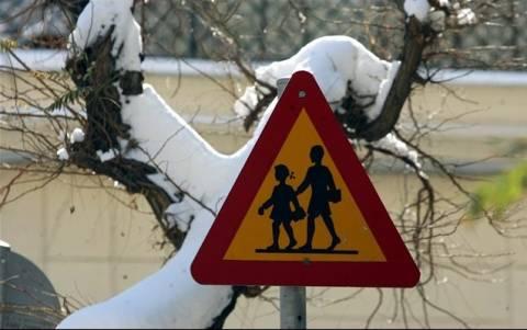 Δεν θα ανοίξουν στην ώρα τους τα σχολεία στη Δυτική Μακεδονία