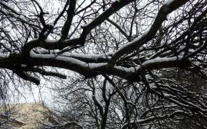 Κρήτη: Εγκλωβισμένα στο χιόνι λεωφορεία που μετέφεραν μαθητές