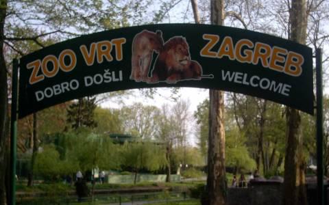 Sexy tour ανήμερα του Αγ. Βαλεντίνου στον ζωολογικό κήπο του Ζάγκρεμπ