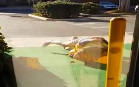ΗΠΑ: Ξαναμμένο ζευγάρι έκανε σεξ έξω από εμπορικό μέρα… μεσημέρι! (video)