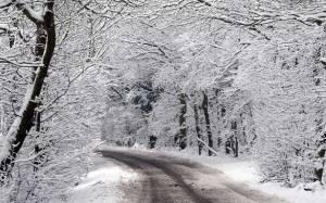 Χιόνια και στη Λευκωσία