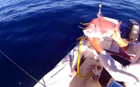 Ψάρεμα: Ετσι θα πιάσετε μεγάλα ψάρια (video)