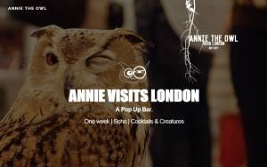 Λονδίνο: Ανοίγει μπαρ με κουκουβάγιες