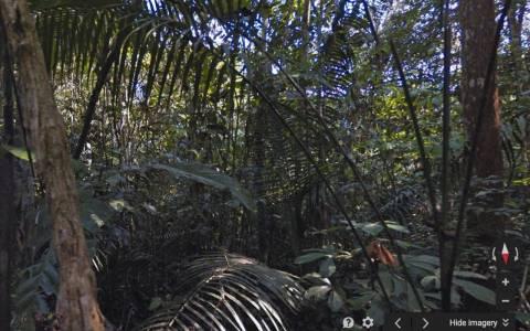 Google: Βρεθείτε με ένα κλικ στον Αμαζόνιο (video)