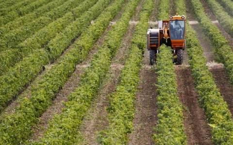 Παράταση για τις δηλώσεις μίσθωσης αγροτικών εκτάσεων