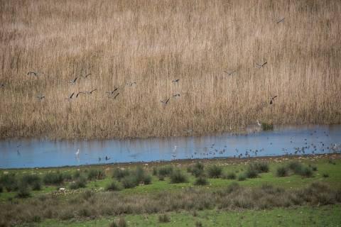 Εύβοια: SOS εκπέμπει η λίμνη του Δύστου