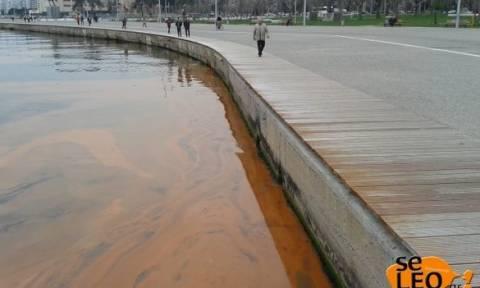 «Βάφτηκε» κόκκινος ο Θερμαϊκός από την παλίρροια (Photos)