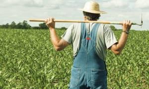 Περιφέρεια Αττικής: Ανάκληση παράτυπων συνταξιοδοτήσεων αγροτών