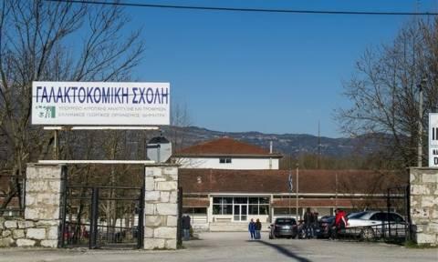 Ιωάννινα: Διευκρινίσεις για το πόρισμα της ΕΔΕ έδωσε ο πρόεδρος του Οργανισμού