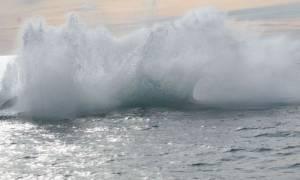 Μεξικό: Φάλαινα χτύπησε σκάφος - Σκοτώθηκε τουρίστρια