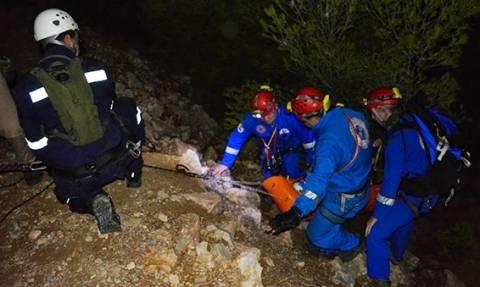 Καστέλι Ερέτρια: 40χρονος λιποθύμησε στην κορυφή του βουνού