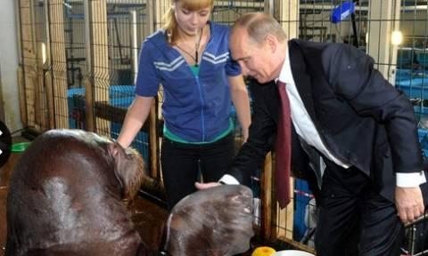 Γιατί «εξαφανίστηκε» ο Πούτιν; Η ανακοίνωση του Κρεμλίνου