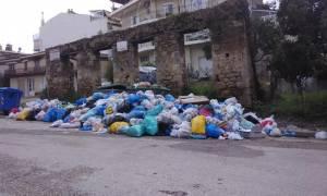 Λαϊκή εξέγερση στον Πύργο για τα σκουπίδια