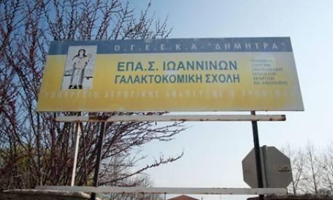 Ιωάννινα: Νέες συγκεντρώσεις στη μνήμη του Βαγγέλη στη Γαλακτοκομική Σχολή (video)