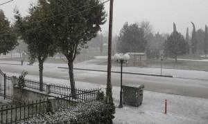 Βόρεια Ελλάδα: Τσουχτερό κρύο και αραιές χιονοπτώσεις