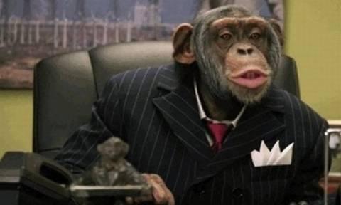 Ινδία: Αφήνουν όλη τους την περιουσία στη μαϊμού τους