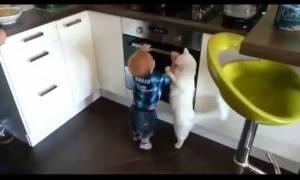 Γάτα νουθετεί νήπιο και γίνεται viral (video)