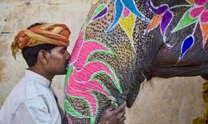 Ταξίδι στην Ινδία (photos)