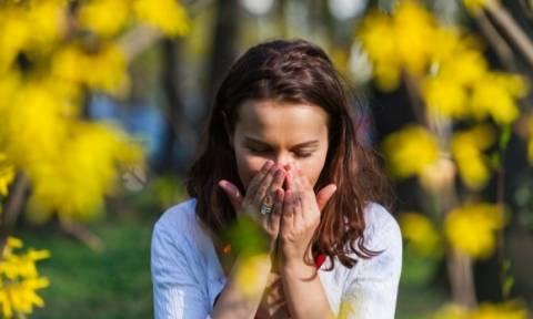 Γύρη και αλλεργίες: Πώς θα προστατευτείτε