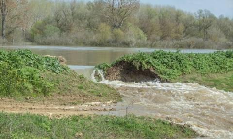 Σέρρες: Πέφτει η στάθμη του νερού - Παραμένει πλημμυρισμένος ο κάμπος
