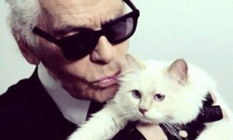 Είναι αλήθεια: Η γάτα του Karl Lagerfeld βγάζει περισσότερα χρήματα από εσένα!