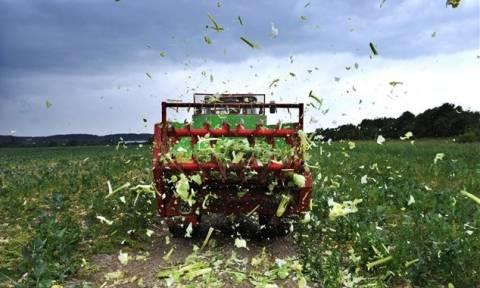 Αποζημιώσεις 30 εκατ. ευρώ σε αγρότες τη Μ. Τρίτη από τον ΕΛΓΑ