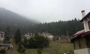 Πάσχα με χιόνι στη Βασιλίτσα και στο Περτούλι (video)